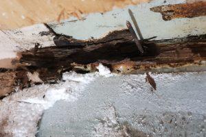 Bathroom Wood Rot Repair